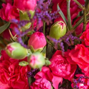 Spraynelken mit Dianthus, Strandflieder und Limonium