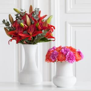 Pflegetipps Blumen zum Muttertag