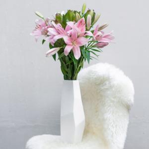Brindisi-Lilien und Leucadendron