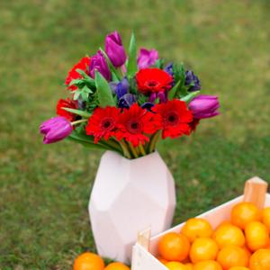 Tulpen mit Anemonen und Germinis