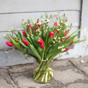 Tulpen und Waxflower