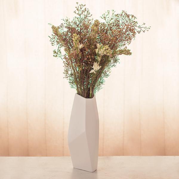 Waxflower-Nachthyazinthen