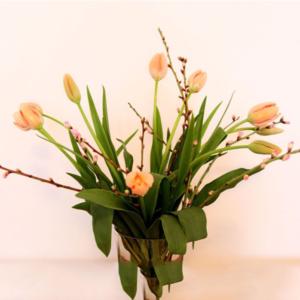 Frühlingsgefühle: Französische Tulpen und Mandelzweige