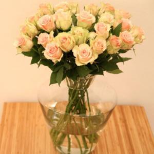 Royaler Besuch: rosa Rosen