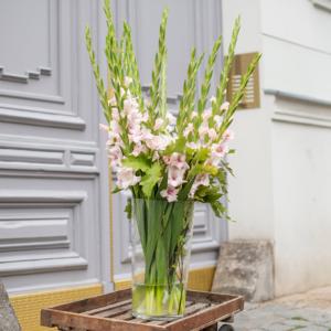 Gladiolen und Eichenlaub