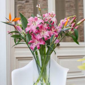 Wie arrangiere ich meine Bloomen