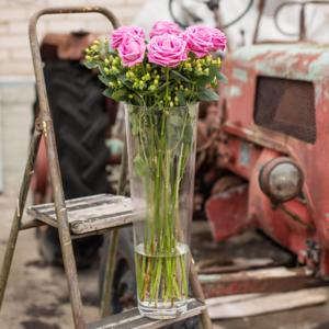 Rosen mit Hypericum