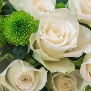 Weiße Rosen und Knopfsantini
