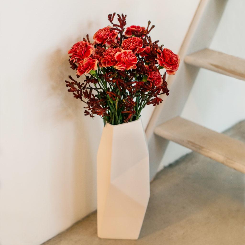 rote-Nelken-Dianthus-mit-Kängurublume-Anigozanthos