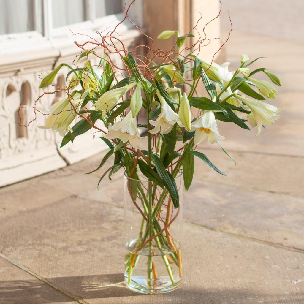 weisse-Oster-Lilien-Lilium-longiflorum-mit-Korkenzieher-Weide-Salix-matsudana-Tortuosa