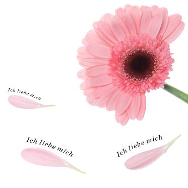 Ich-liebe-Mich-Abo_PLP