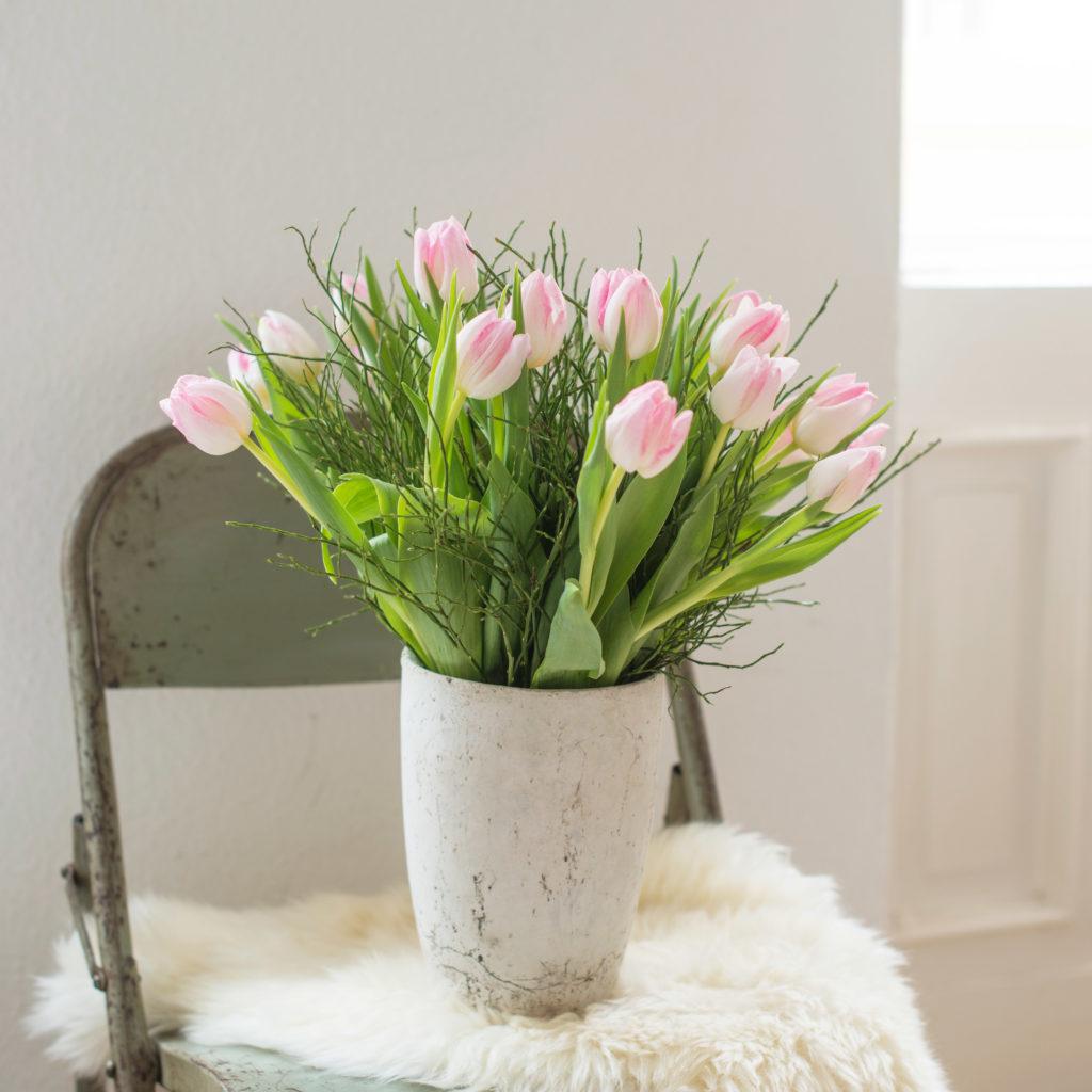 Tulpen-Heidelbeere