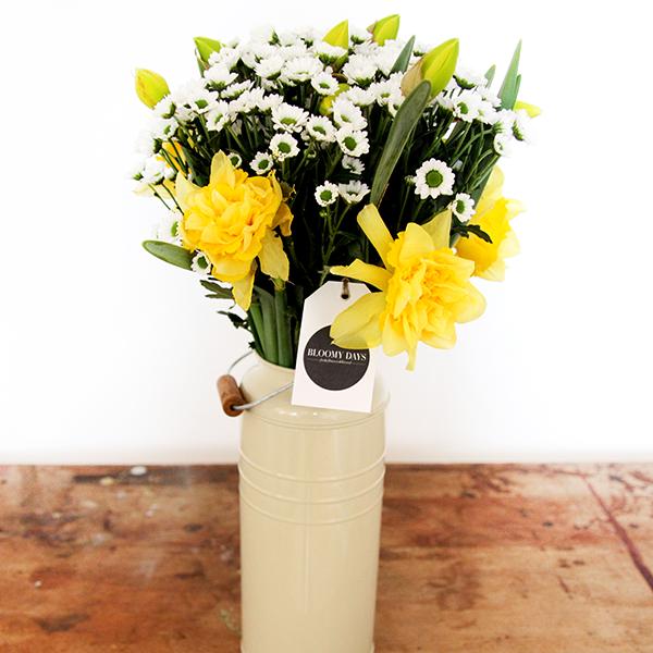 gelbe-Osterglocken-Narzissen-Narcissus-mit-Santini-Chrysanthemen--Chrysanthemum
