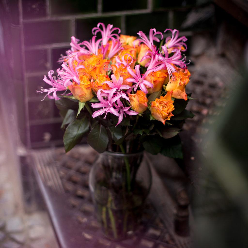 orange-Rosen-rosa-Guernseylilien-Nerinen-Nerine