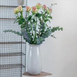 Rosen und Eukalyptus