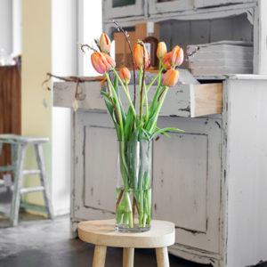 Französische Tulpen und Bänderweide