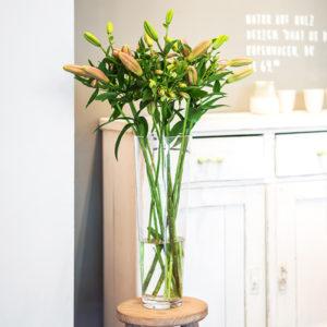 Lilien und Inkalilien