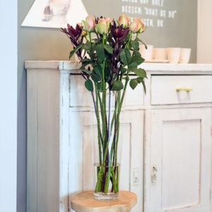 Belle Rose und Leucadendron