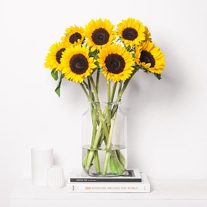 Sommerliche Sonnenblumen