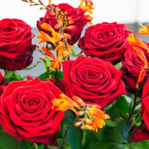 Rosen und Montbretien