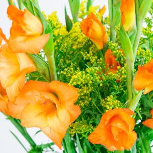 Sunbeam: Gladiolen und Solidago
