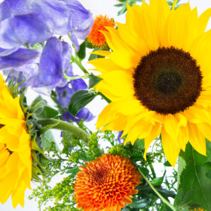 Autumn Sun: Sonnenblume, Eisenhut, Färberdisteln