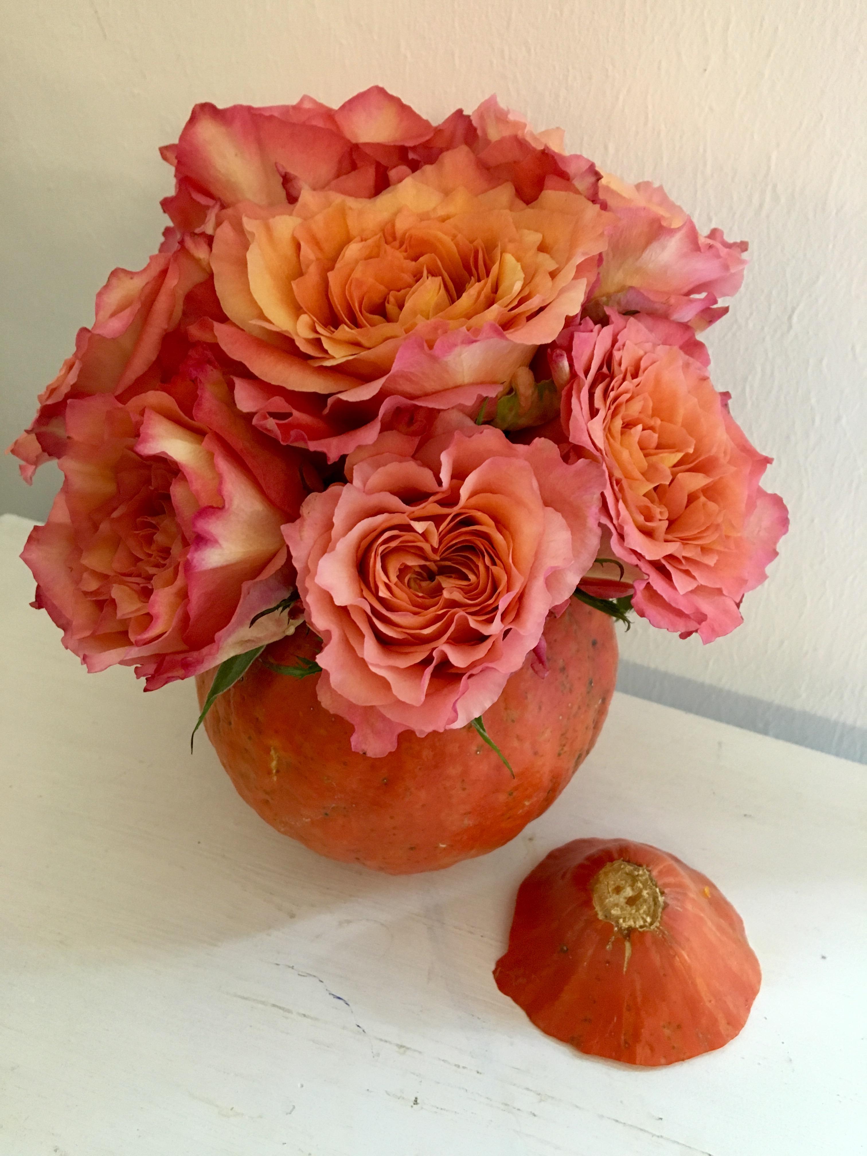 DIY Kürbis-Vase