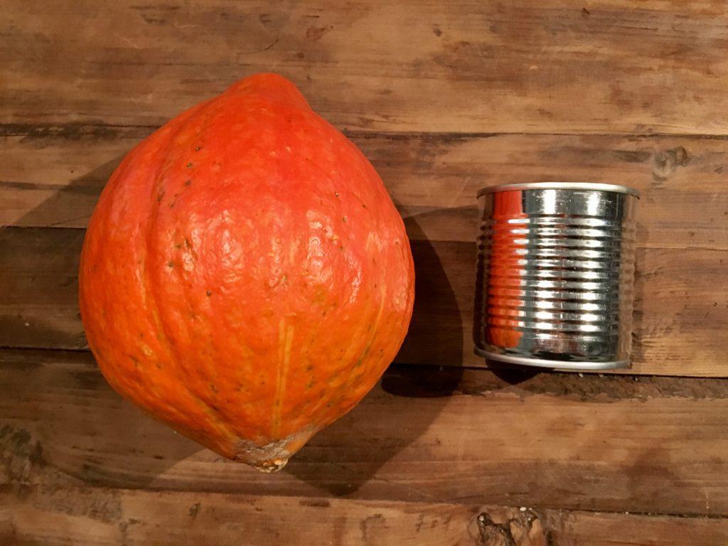 Material für DIY Kürbis-Vase