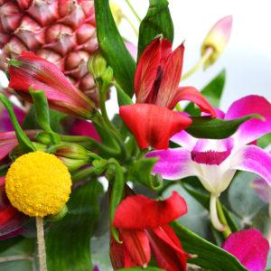 Hello Pineapple: Zierananas, Orchidee, Inkalilie, Craspedia, Eucalyptus