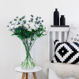 Chrysanthemen, Edeldisteln
