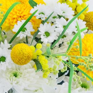 Autumn Daydream: Mimosen, Craspedia, Chrysanthemen, Santini