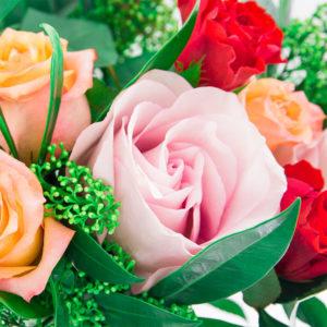 Bunte Rosen und Skimmia