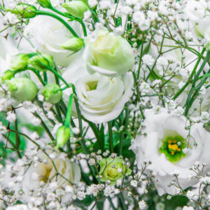 White Japan: Eustoma, Schleierkraut