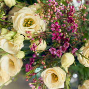 Eustoma und Waxflower