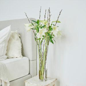 Lilien, Weidenkätzchen