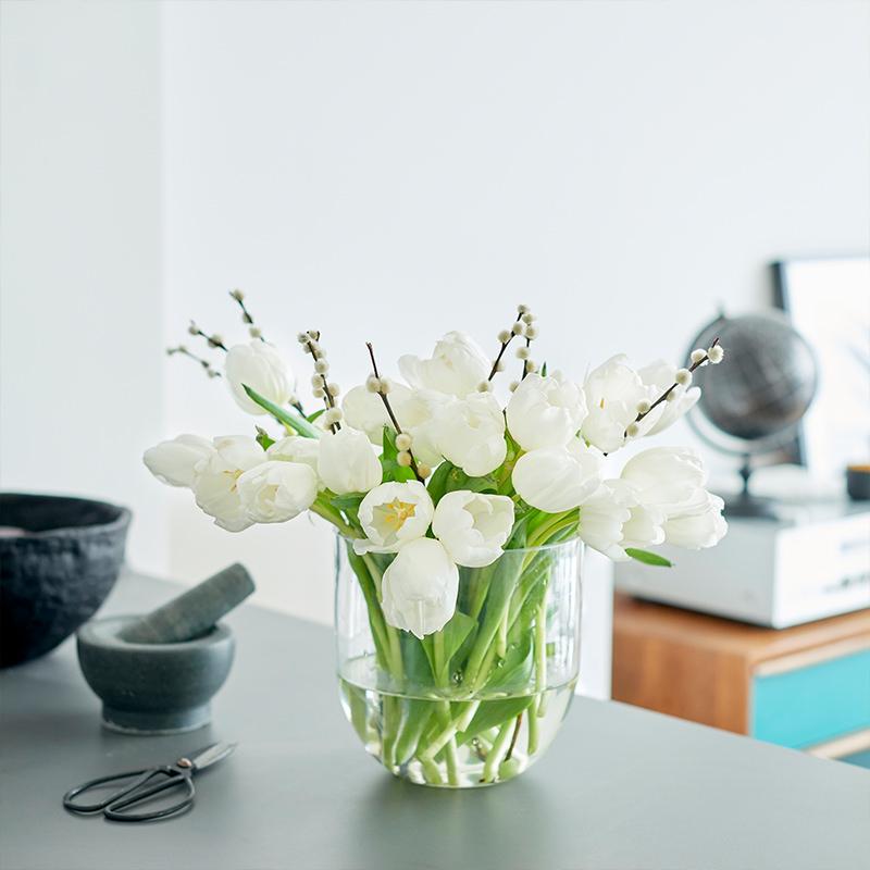 Tulpen, Weidenkätzcheni