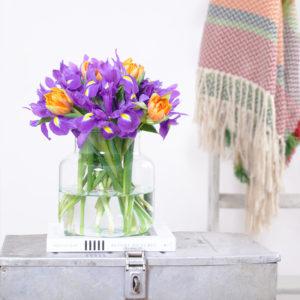 Iris, Tulpen
