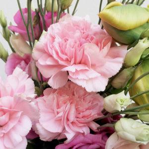 Nelken, Eustoma, Tulpen