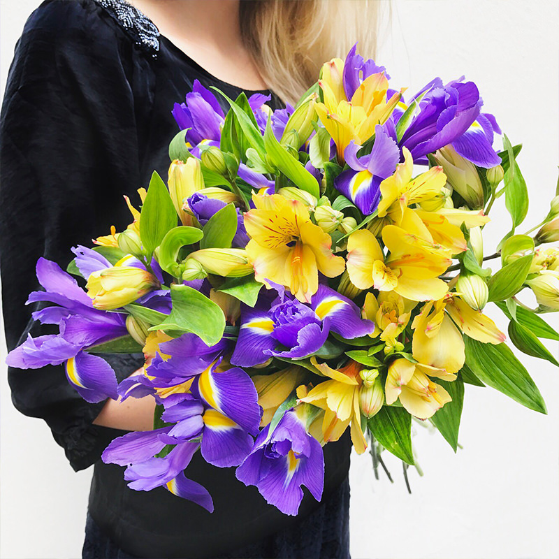 Iris, Inkalilien