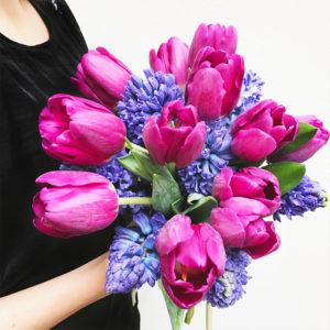 Tulpen und Hyzinthen