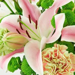 Lilien, Nelken, Knopfsantini