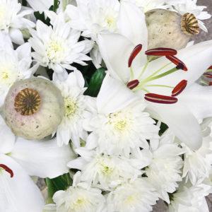 Lilien, Chrysanthemen, Mohnkapseln