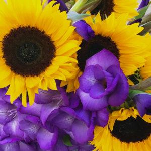 Gladiolen & Sonnenblumen