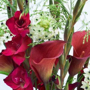 Gladiolen, Calla, Milchstern, Panicum
