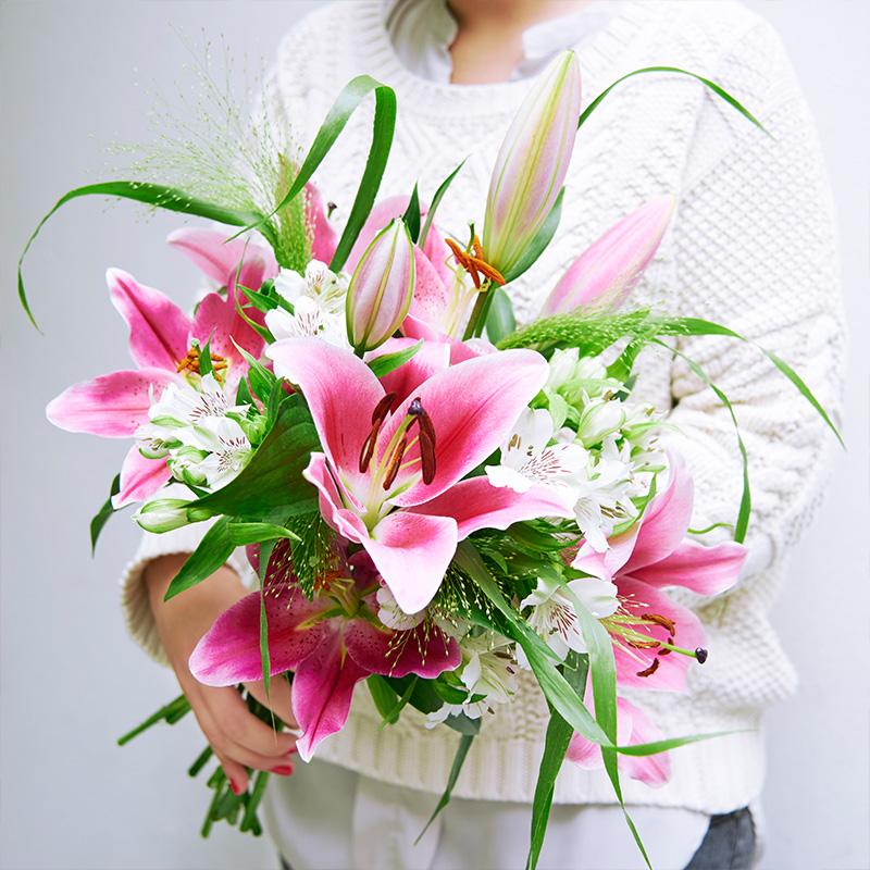 Lilien, Inkalilien, Panicum