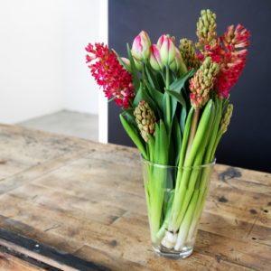 rosa-Tulpen-Tulipa-mit-roten-Hyazinthen-Hyacinthus