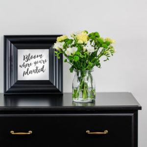 Unsere Blumen der Woche: Tender Touch