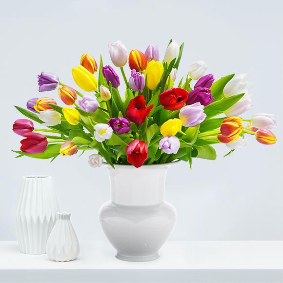 Pure Tulips