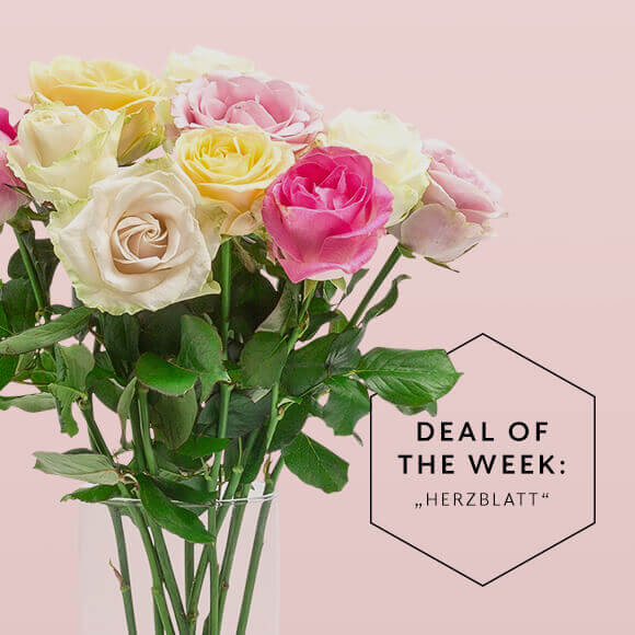 Deal_of_the_Week_KW09