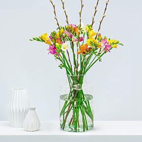 Frühlingsfreesien_online_bestellen